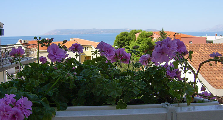 Pension Bili Dvor, Tučepi - balcony with flowers and sea view