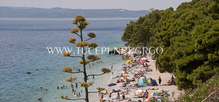 Beach at former hotel Jadran