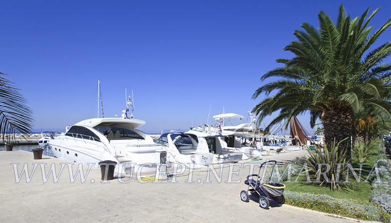 Yachts in Tucepi's marine